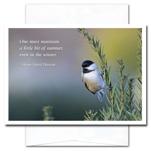 New Year's Card - Chickadee cover shows a little chickadees perched on a pine branch and the quotation:  One must maintain a little bit of summer, even in the winter. -Henry David Thoreau