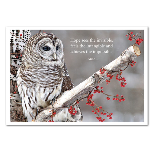 "Hope New Years Card:  Cover photo shows gray owl on branch with quote, ""Hope sees the invisible, feels the intangible, and achieves the impossible. - Anon."""