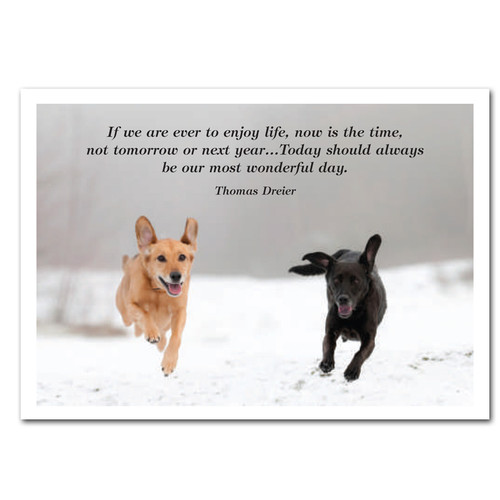 "Most Wonderful Day New Years Card:  Cover photo shows two dogs running in snow with Thomas Dreier quote; ""If we are ever to enjoy life, now is the time,not tomorrow or next year. Today should always be our most wonderful day"""