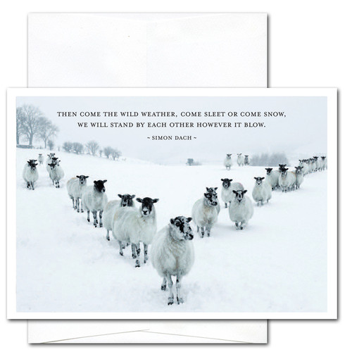 """Quotation Card - Sleet or Snow: Cover photo shows a group of sheep standing in a """"V"""" in a snow covered field with the Simon Dach quotation """"The come the wild weather, come sleet or come snow, we will stand by each other however it blow"""""""