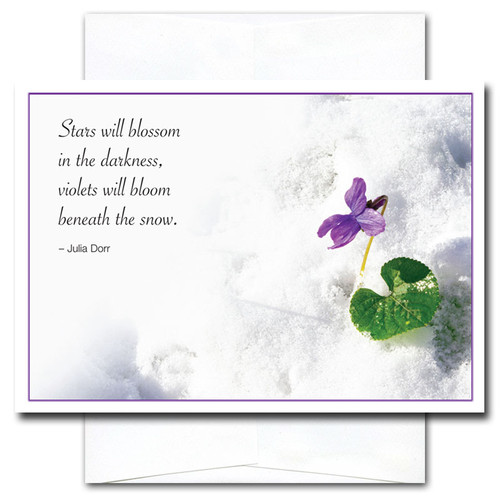 New Year Card - Beneath the Snow shows a violet peeking up through the snow along with the quotation: Stars will blossom in the darkness. Violets will bloom beneath the snow. -Julia Dorr