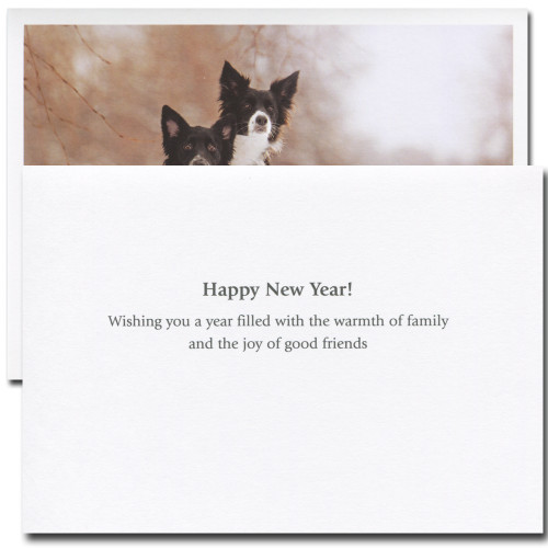 New Year Cards: Best Thing - box of 10 cards & env
