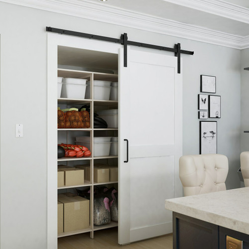 wood white painted 2 panel pantry barn door