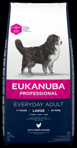 Dog Large Adult Everyday