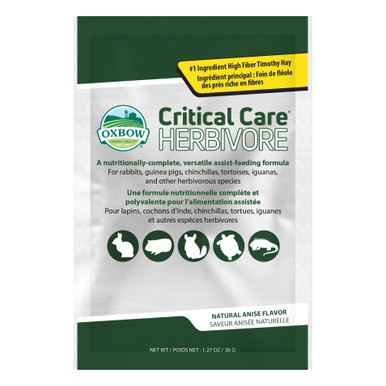 Critical Care Anis