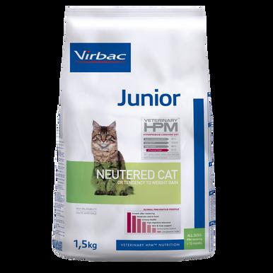 Junior Neutered Cat