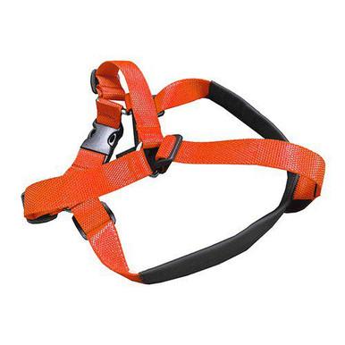 Bälte Extension Orange