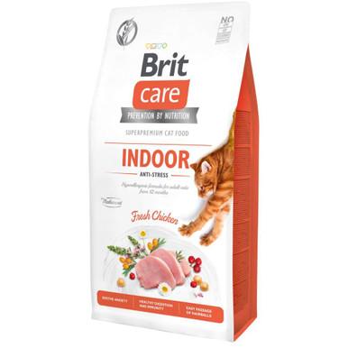 Indoor Anti-Stress Cat