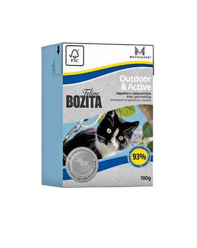 Feline Outdoor & Active gelé för katt