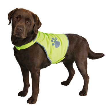 Reflexväst för hund