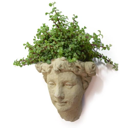 Vintage Goddess Head Concrete Wall Planter