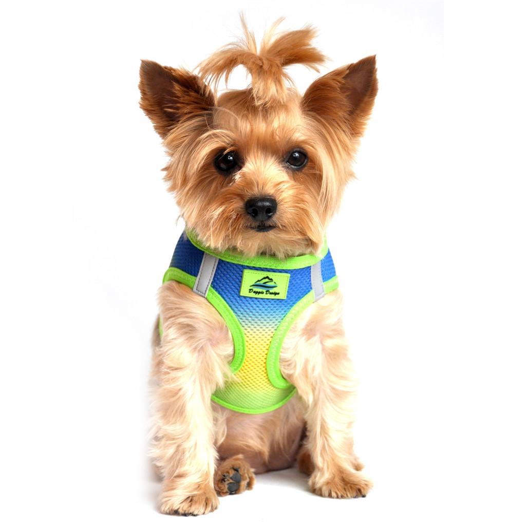 Choke Free Ombre Mesh Dog Harness - Cobalt Sport