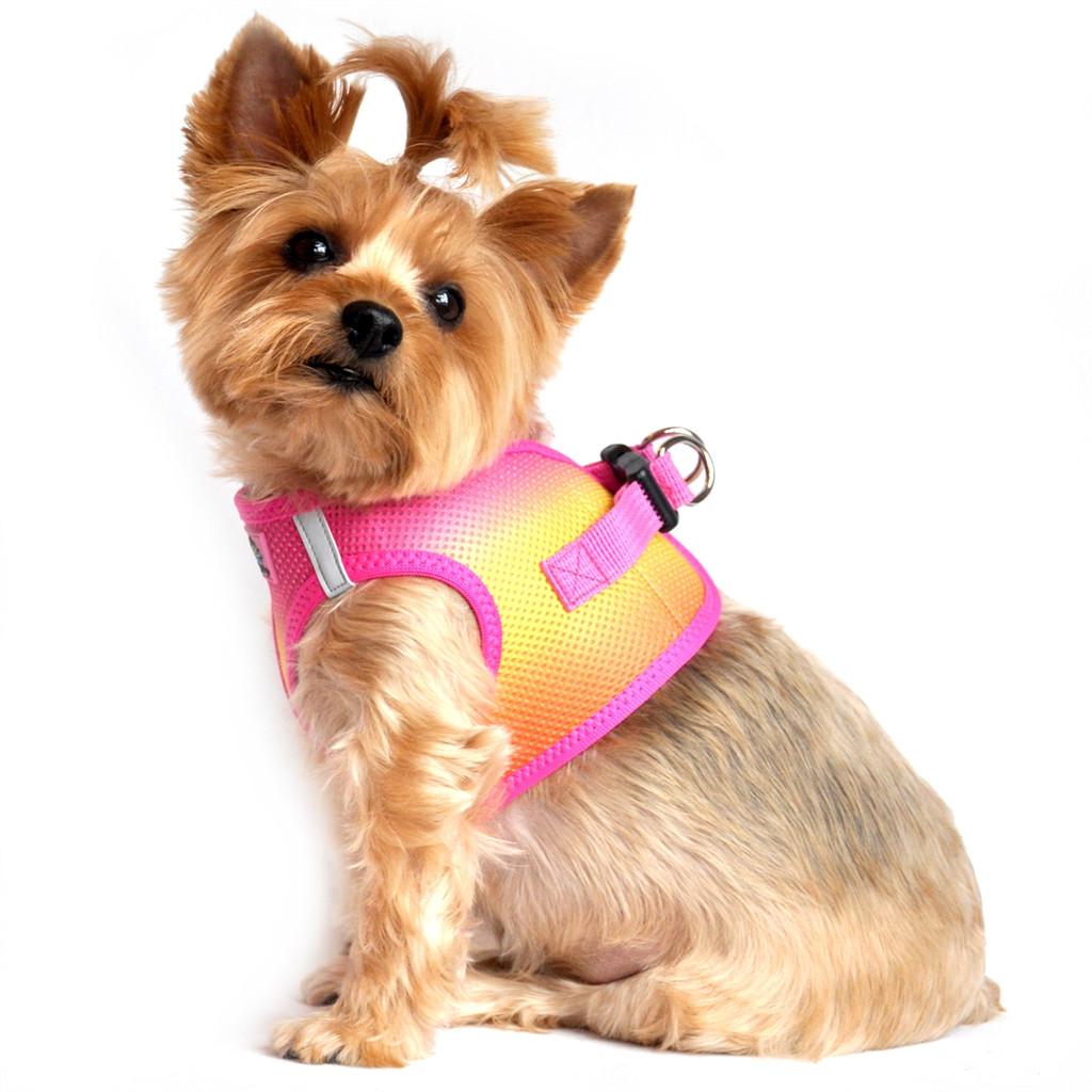 Choke Free Ombre Mesh Dog Harness - Raspberry Pink Orange