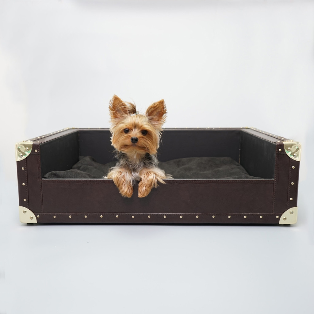 The Trunk Bed - Yorkshire (many colors, Faux Leather, Large)