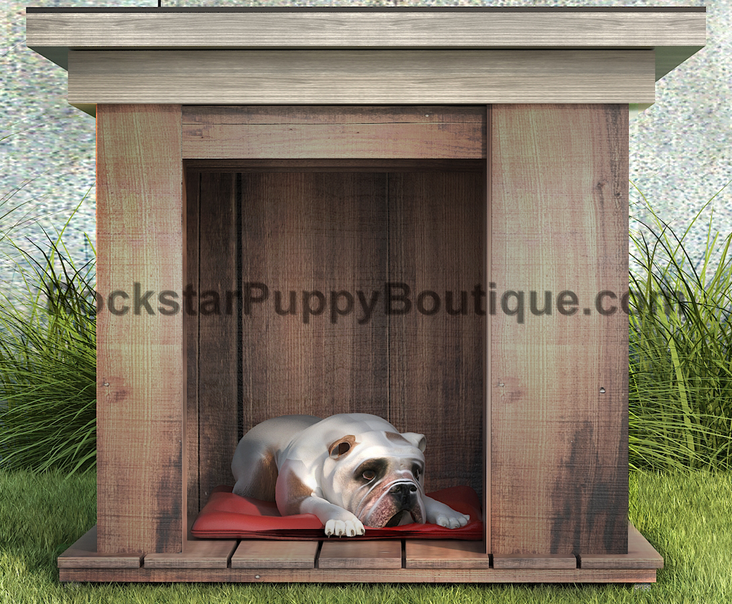 hemlock dog house interior