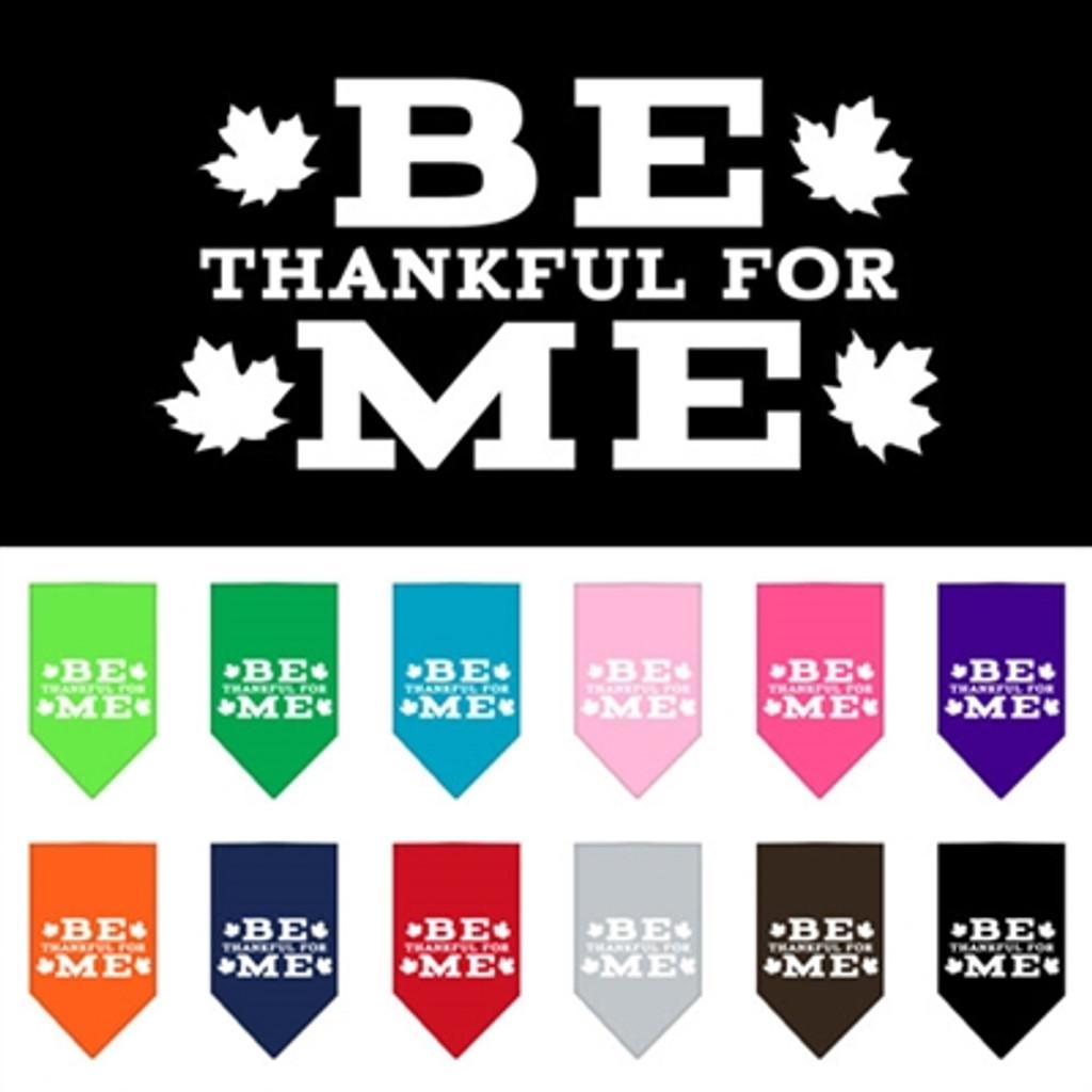be thankful for me pet bandana