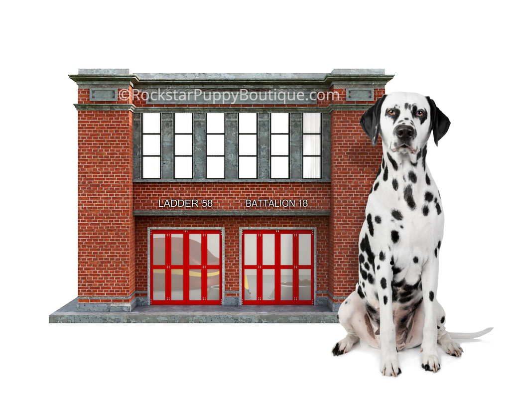 Fire Station Dog House with Dalmation