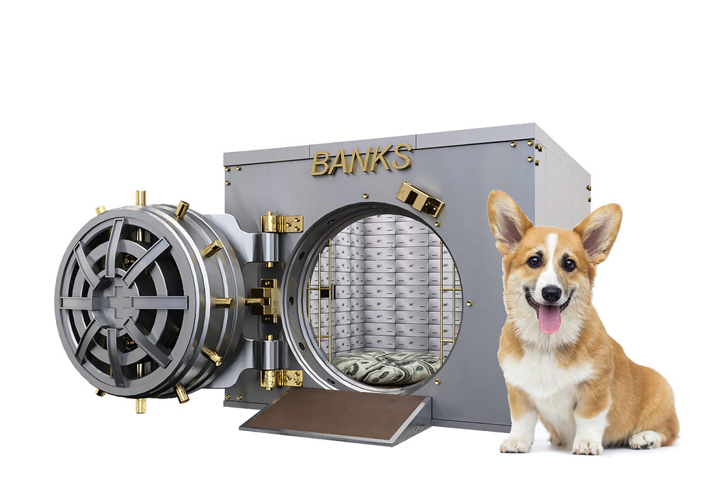 bank vault dog house
