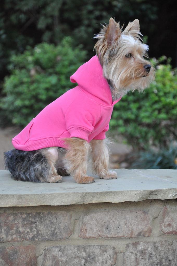 pink dog hoodie
