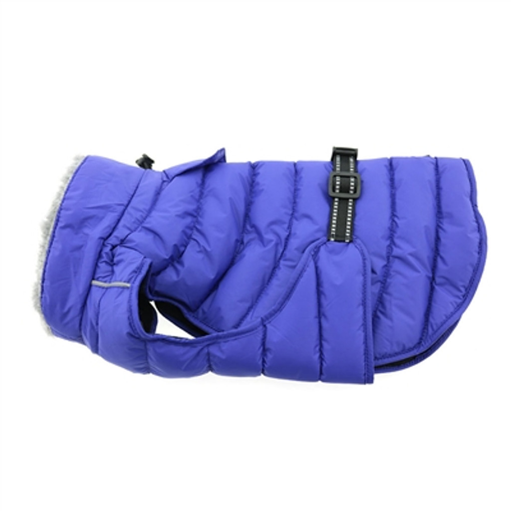 blue puffer dog coat