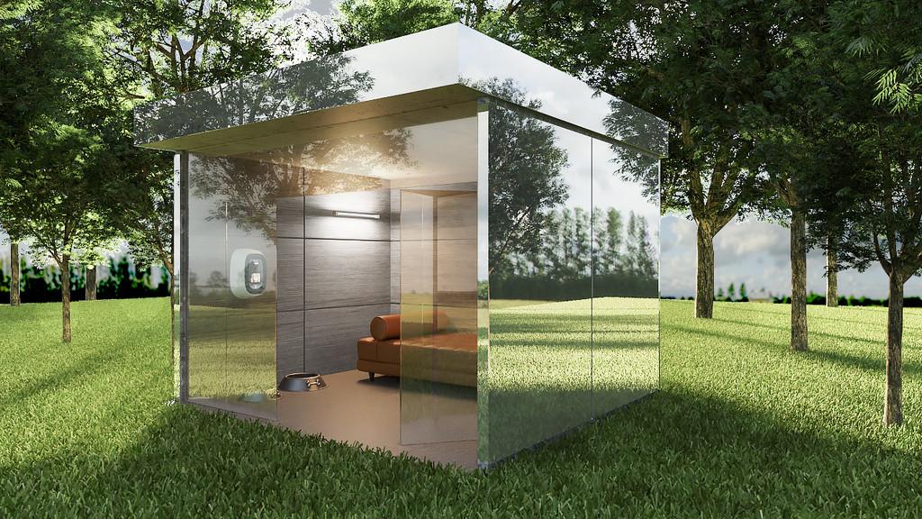 Reflection Dog House