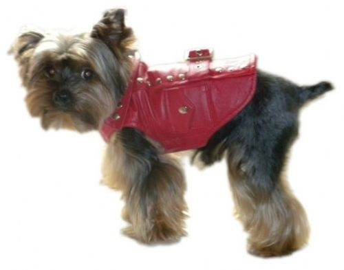 Best Dog Jacket | Thriller Red Motorcycle Dog Jacket