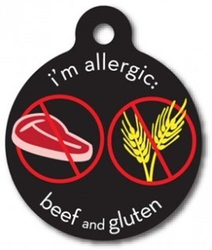 Beef and Gluten Allergy Medical Alert Dog ID Tag