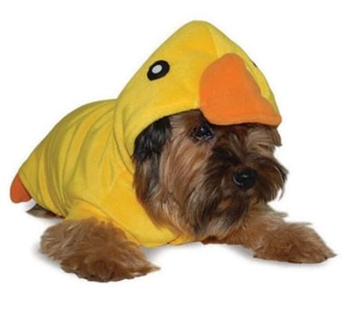 Duckling Duck Costume/Bathrobe