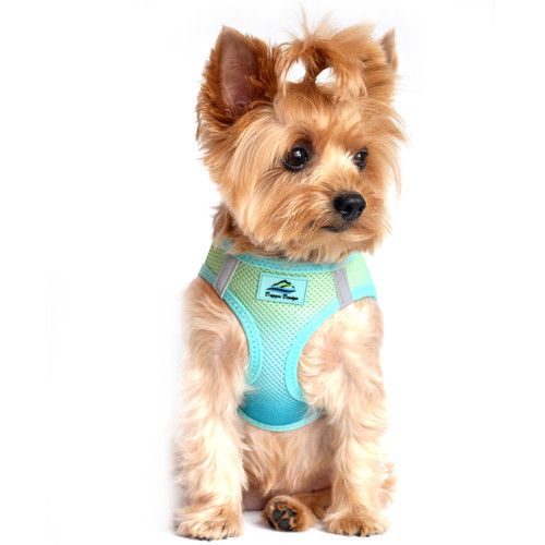 Choke Free Ombre Mesh Dog Harness - Aruba Blue