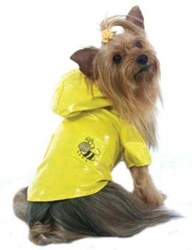 Yellow Bee Dog Raincoat