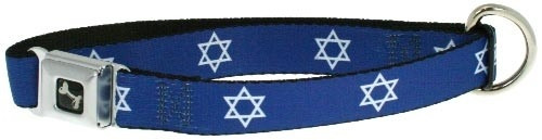 Dog Collar | Star of David Dog Collar + Leash Set