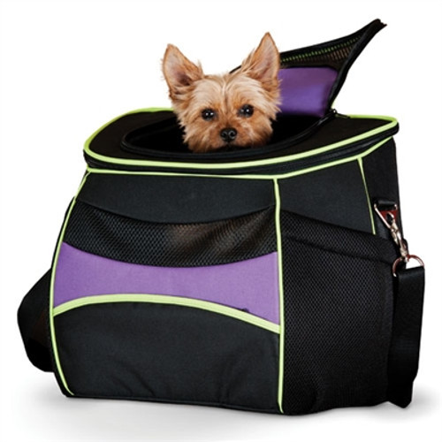 Dog Backpack Carrier |comfy go Dog Carrier