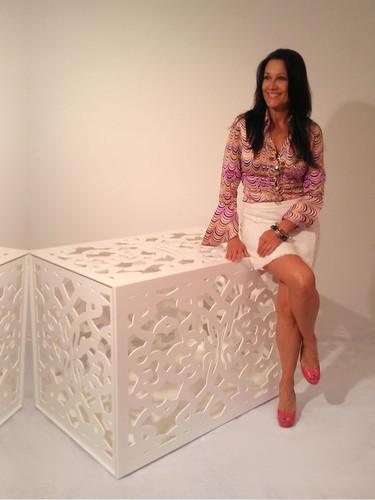 luxury Designer Dog Crate