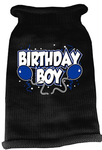 birthday boy dog sweater