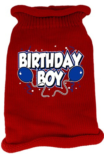 birthday boy dog sweater