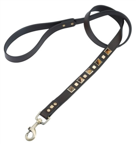 tigers eye dog leash