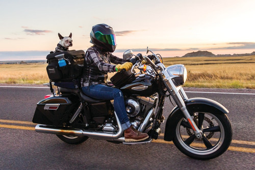 Motorcycle Dog Carrier - Pet Palace