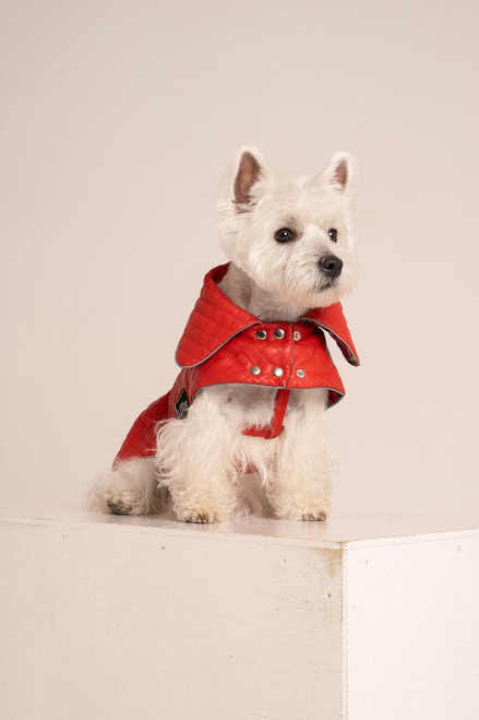 Quilted Faux Leather Dog Jacket - Red