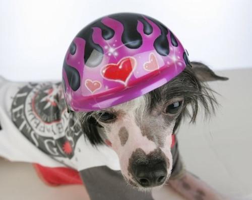 Airbrushed Purple Glitter Flames Dog Helmet