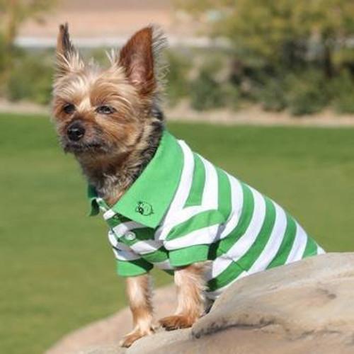 Little dog wearing Dog Polo Shirt - Greenery and White