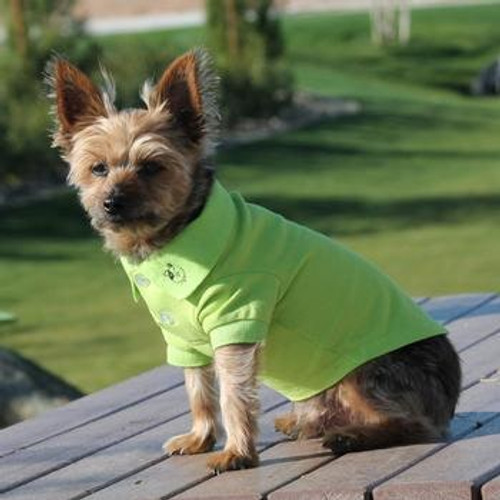 Little dog wearing Dog Polo Shirt - Green Flash