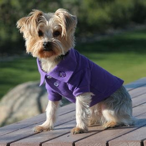 Little dog wearing Dog Polo Shirt - Ultra Violet