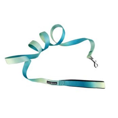 Ombre Dog Leash - Aruba Blue
