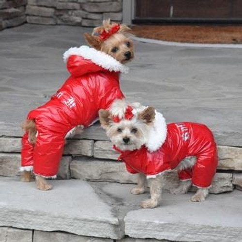 Dogs wearing Dog Snowsuit Harness - Red Ruffin It