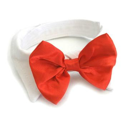 Satin Dog Bow Tie and Collar - White Collar with Red Bow Tie