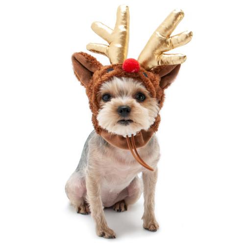 Dog Hat - Rudolph