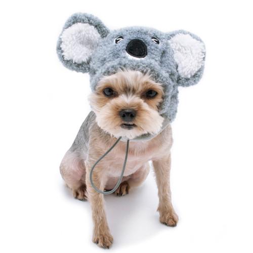 Dog Hat - Koala