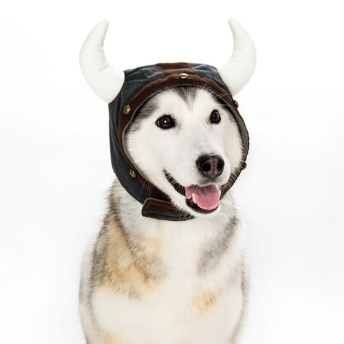 Dog Hat - Viking Helmet