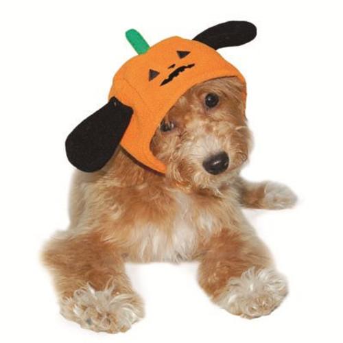 Dog Hat - Pumpkin