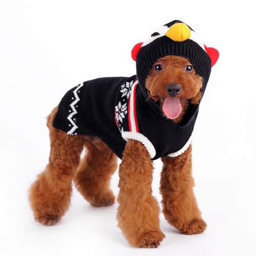 Dog Sweater - Penguin